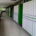lockers metalico o madera especial economico bogota